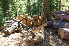 Vecchia ascia che sta contro i pezzi accatastati di legna da ardere Fotografie Stock