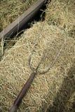 Vecchia attrezzatura di legno del granaio del mezzo dello strumento della forca dell'azienda agricola Fotografia Stock