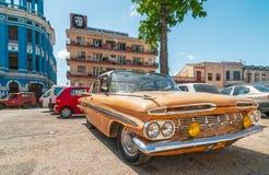 Vecchia automobile americana che sta sotto l'albero Fotografia Stock
