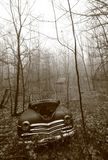 Vecchia automobile lasciata alla putrefazione nel legno del New Hampshire Fotografia Stock