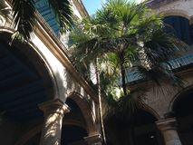 Vecchia Avana - Cuba - Palacio de la Artesania Fotografia Stock Libera da Diritti