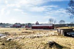 Vecchia azienda agricola norvegese Immagine Stock Libera da Diritti