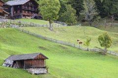 Vecchia azienda agricola rustica dell'alpe Fotografia Stock