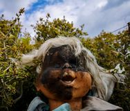 Vecchia bambola con il fronte bruciato fotografia stock