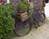 Vecchia bici Fotografie Stock Libere da Diritti