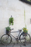 Vecchia bici Fotografia Stock