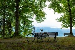 Vecchia bici e banco di legno dal lago e cielo blu accanto agli alberi fotografia stock