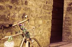 Vecchia bici isolata con le piante ed i fiori nel canestro Fotografia Stock