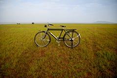 Vecchia bici in Tailandia Fotografie Stock