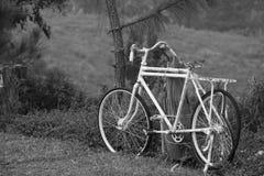 Vecchia bicicletta bianca Immagine Stock Libera da Diritti