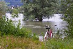 Vecchia bicicletta che parcheggia vicino al fiume Immagine Stock