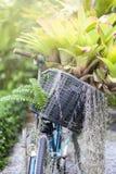 Vecchia bicicletta con i fiori Immagini Stock Libere da Diritti