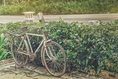 Vecchia bicicletta parcheggiata accanto al cespuglio ed ai fiori immagini stock libere da diritti