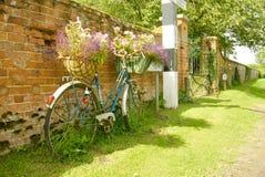 Vecchia bicicletta utilizzata per l'esposizione del fiore Fotografia Stock