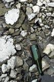 Vecchia bottiglia Fotografia Stock Libera da Diritti
