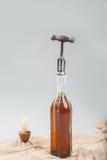 Vecchia bottiglia di vino con la cavaturaccioli Immagine Stock