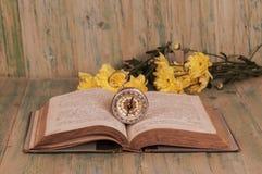 Vecchia bussola sul vecchio libro aperto Fotografie Stock