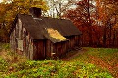 Vecchia cabina abbandonata nel legno della proprietà di Ashridge, Hertfordshire, Inghilterra in Autimn Immagine Stock