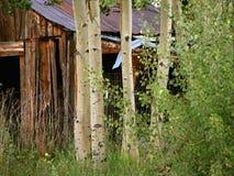 Vecchia cabina della montagna fotografie stock libere da diritti