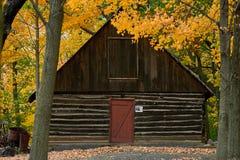 Vecchia cabina di ceppo, autunno, almelund, Minnesota immagine stock
