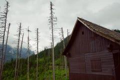 vecchia cabina di legno della capanna in montagna Fotografia Stock