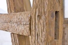 Vecchia carcassa con il woodworm Immagini Stock
