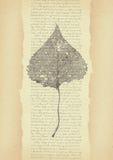 Vecchia carta illustrazione vettoriale