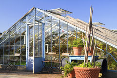 Vecchia casa calda usata per coltivare le viti Fotografie Stock Libere da Diritti