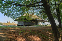 Vecchia casa dei contadini nella tonalità degli alberi Fotografia Stock
