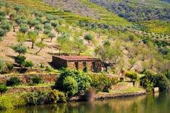 Vecchia casa di campagna dal fiume - fiume del Duero fotografie stock