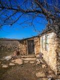 Vecchia casa di pietra sotto un albero asciutto Immagine Stock