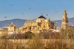 Vecchia cattedrale di Moschea della citt? di Cordova sopra il fiume di Guadalquivir in Andalusia, Spagna fotografia stock