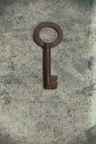Vecchia chiave sulla vecchia carta strutturata con i modelli naturali Fotografia Stock