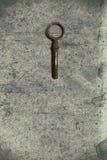 Vecchia chiave sulla vecchia carta strutturata con i modelli naturali Fotografia Stock Libera da Diritti