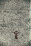 Vecchia chiave sulla vecchia carta strutturata con i modelli naturali Fotografie Stock Libere da Diritti