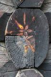 Vecchia chiesa della Norvegia albero sulla casa di legno Fotografie Stock