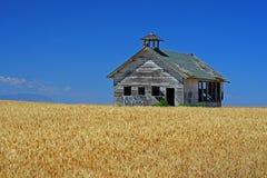 Vecchia chiesa nel giacimento di grano Immagini Stock Libere da Diritti