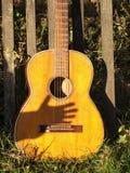 Vecchia chitarra in natura fotografie stock libere da diritti
