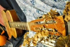 Vecchia chitarra spagnola con i fiori secchi che si trovano su un lenzuolo immagini stock libere da diritti