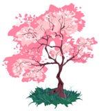 Vecchia ciliegia di fioritura illustrazione vettoriale