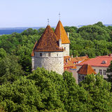 Vecchia città di Tallinn Fotografia Stock Libera da Diritti