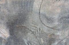 Vecchia colla del fondo di tappeto immagine stock libera da diritti