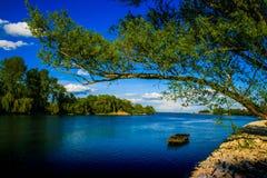 Vecchia corrente del fiume il Drava fotografia stock