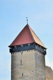 Vecchia costruzione con il gallo sulla cima del tetto Immagini Stock Libere da Diritti