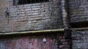 Vecchia costruzione di mattone con la finestra grattata, posto di imprigionamento, nessuna probabilità sfuggire a archivi video