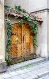 Vecchia doppia porta di legno Fotografie Stock