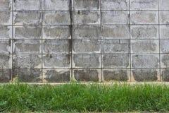 Vecchia erba del cemento della parete astratta del fondo Fotografie Stock Libere da Diritti