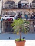 Vecchia facciata di Habana Fotografia Stock