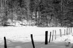 Vecchia fila del recinto Fotografia Stock