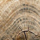 Vecchia fine di legno di struttura in su Immagine Stock